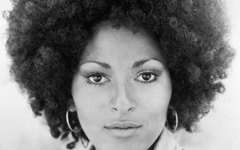 Pam Grier Wiki Bio Net Worth Height Measurement Age
